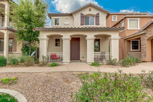 3826 E Trigger Way, Gilbert, AZ 85297 (MLS #5903697) :: Yost Realty Group at RE/MAX Casa Grande