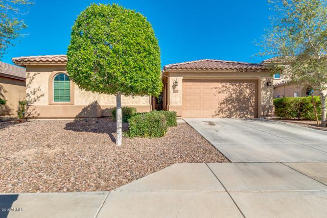 619 S 195TH Drive, Buckeye, AZ 85326 (MLS #5903719) :: Yost Realty Group at RE/MAX Casa Grande