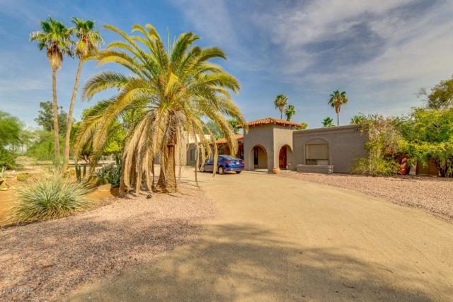 5739 E Cactus Road, Scottsdale, AZ 85254 (MLS #5903733) :: Team Wilson Real Estate