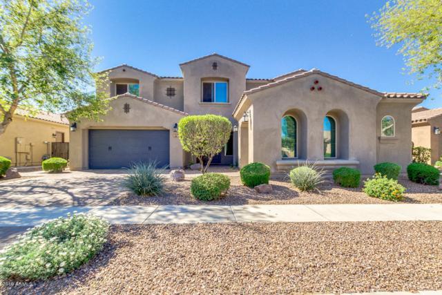 3121 E Blue Sage Court, Gilbert, AZ 85297 (MLS #5903793) :: Yost Realty Group at RE/MAX Casa Grande