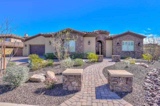 28995 N 71ST Avenue, Peoria, AZ 85383 (MLS #5903832) :: The Results Group