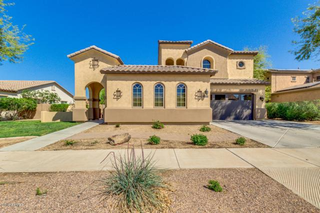 18694 E Celtic Manor Drive, Queen Creek, AZ 85142 (MLS #5903873) :: Yost Realty Group at RE/MAX Casa Grande