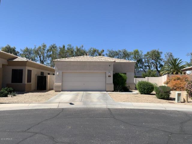 20276 N 64TH Avenue, Glendale, AZ 85308 (MLS #5903918) :: Yost Realty Group at RE/MAX Casa Grande