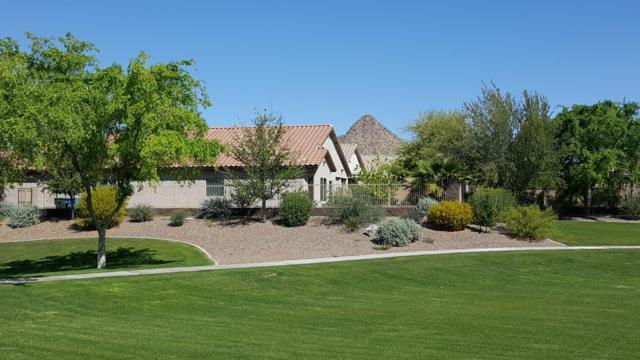 27011 N 55TH Lane, Phoenix, AZ 85083 (MLS #5903922) :: Yost Realty Group at RE/MAX Casa Grande