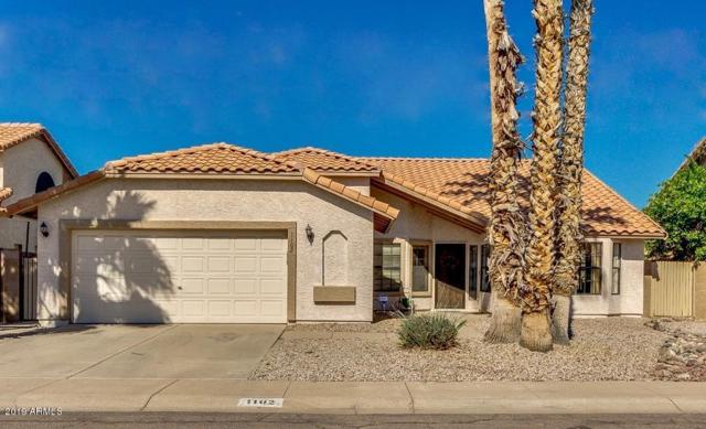 1102 N Saint Elena Street, Gilbert, AZ 85234 (MLS #5903932) :: Yost Realty Group at RE/MAX Casa Grande