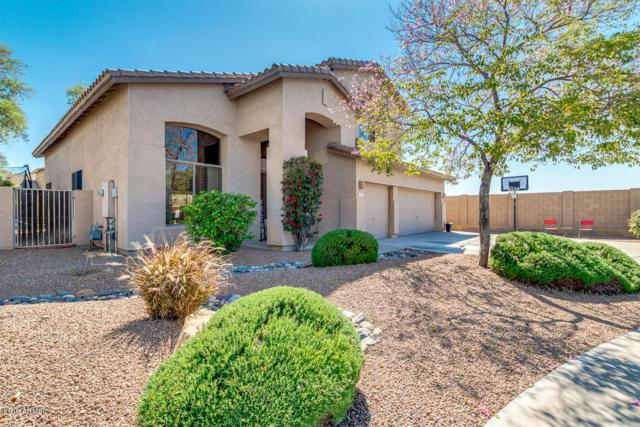 1301 E Folley Place, Chandler, AZ 85225 (MLS #5904002) :: Occasio Realty