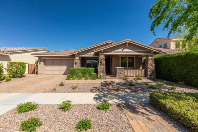 10544 E Pivitol Avenue, Mesa, AZ 85212 (MLS #5904025) :: Yost Realty Group at RE/MAX Casa Grande