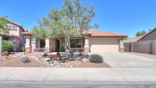 43644 W Hillman Drive, Maricopa, AZ 85138 (MLS #5904082) :: Team Wilson Real Estate