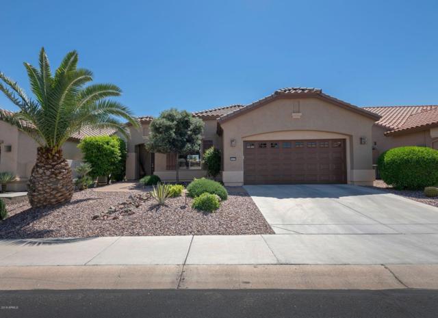 16177 W Vale Drive, Goodyear, AZ 85395 (MLS #5904172) :: Occasio Realty