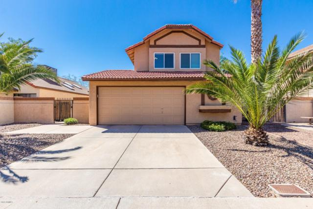 19006 N 4TH Street, Phoenix, AZ 85024 (MLS #5904192) :: Yost Realty Group at RE/MAX Casa Grande