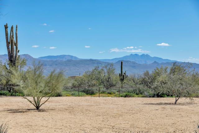 31235 N 164TH Street, Scottsdale, AZ 85262 (MLS #5904235) :: Occasio Realty