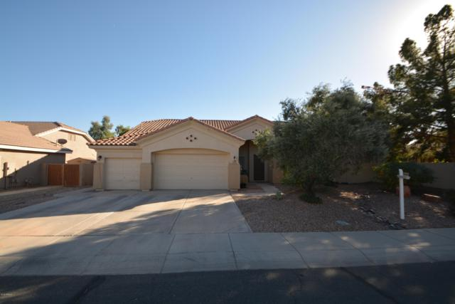 1951 E Laredo Place, Chandler, AZ 85225 (MLS #5904251) :: The Kenny Klaus Team