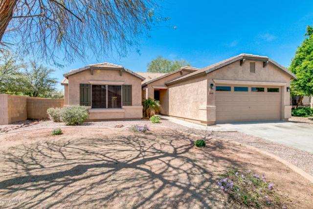 14418 N 176TH Lane, Surprise, AZ 85388 (MLS #5904267) :: Occasio Realty
