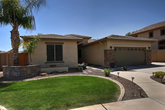 11431 E Sebring Circle, Mesa, AZ 85212 (MLS #5904303) :: Yost Realty Group at RE/MAX Casa Grande
