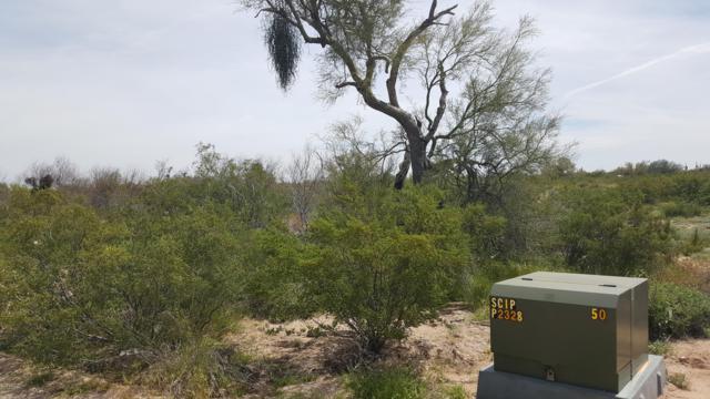 11758 N Dead Man's Gulch Road, Florence, AZ 85132 (MLS #5904310) :: Yost Realty Group at RE/MAX Casa Grande