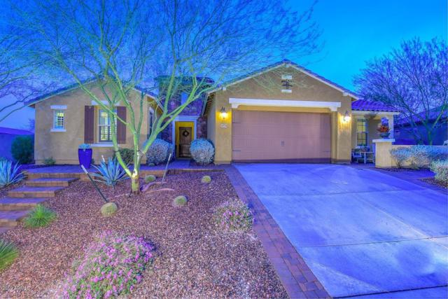 30774 N 120TH Avenue, Peoria, AZ 85383 (MLS #5904355) :: Yost Realty Group at RE/MAX Casa Grande