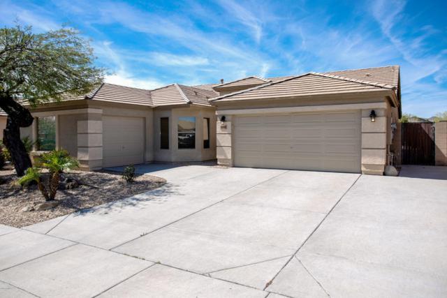 16010 N 174th Lane, Surprise, AZ 85388 (MLS #5904392) :: Yost Realty Group at RE/MAX Casa Grande
