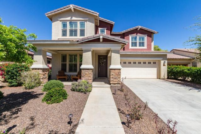 15420 W Corrine Drive, Surprise, AZ 85379 (MLS #5904412) :: Yost Realty Group at RE/MAX Casa Grande