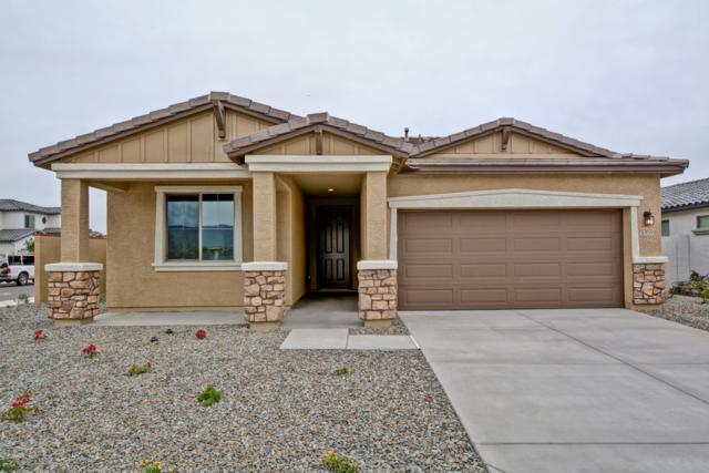 5355 N 188TH Avenue, Litchfield Park, AZ 85340 (MLS #5904442) :: Scott Gaertner Group