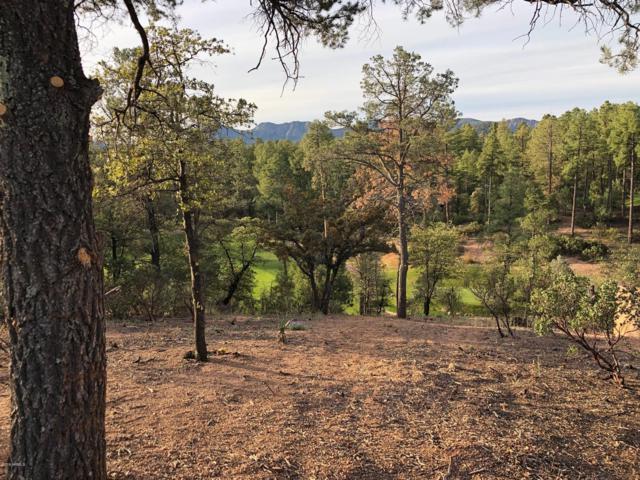 509 N Grapevine Drive, Payson, AZ 85541 (MLS #5904486) :: The Daniel Montez Real Estate Group