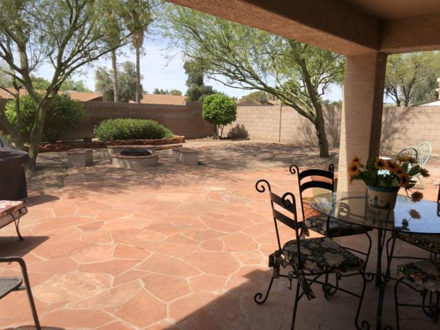 18224 N 54TH Lane, Glendale, AZ 85308 (MLS #5904520) :: Yost Realty Group at RE/MAX Casa Grande