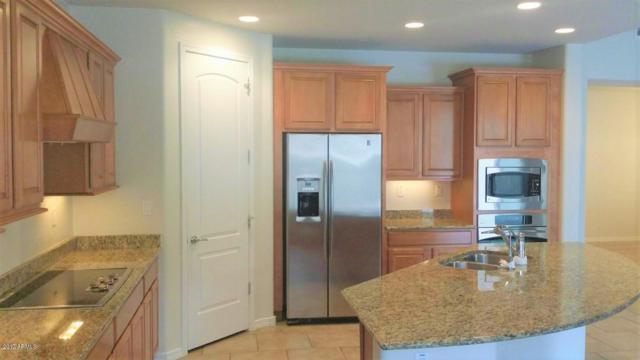 3939 E Waller Lane, Phoenix, AZ 85050 (MLS #5904547) :: Yost Realty Group at RE/MAX Casa Grande