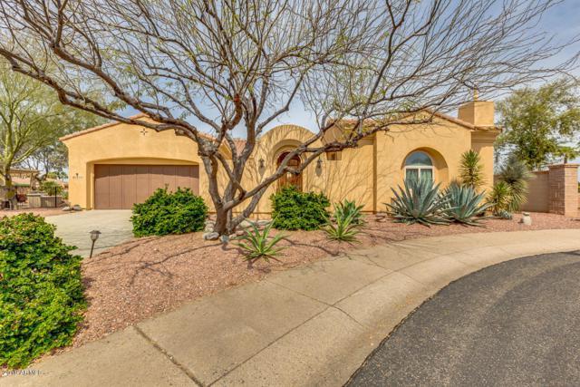 13114 W Los Bancos Court, Sun City West, AZ 85375 (MLS #5904573) :: Yost Realty Group at RE/MAX Casa Grande