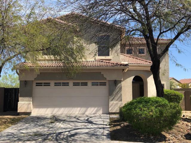 4608 W Crosswater Way, Phoenix, AZ 85086 (MLS #5904582) :: Yost Realty Group at RE/MAX Casa Grande