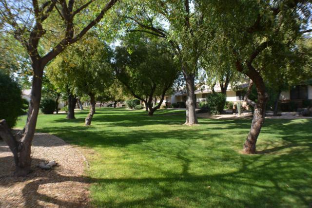 13285 W Bolero Drive, Sun City West, AZ 85375 (MLS #5904758) :: Lux Home Group at  Keller Williams Realty Phoenix