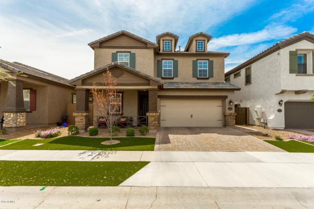 10605 E Naranja Avenue, Mesa, AZ 85209 (MLS #5904761) :: Yost Realty Group at RE/MAX Casa Grande