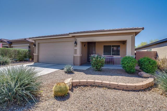 715 W Press Road, San Tan Valley, AZ 85140 (MLS #5904782) :: Occasio Realty