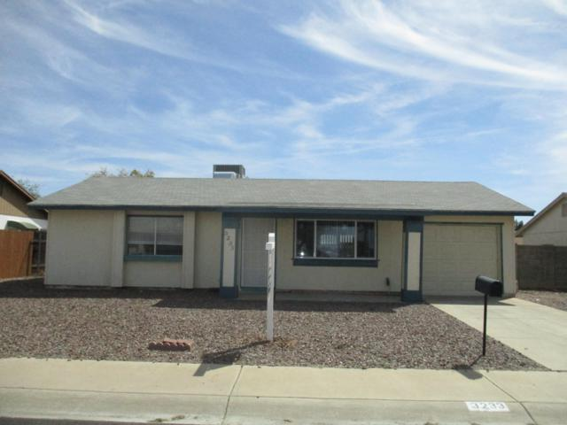 3233 W Villa Maria Drive, Phoenix, AZ 85053 (MLS #5904802) :: Yost Realty Group at RE/MAX Casa Grande