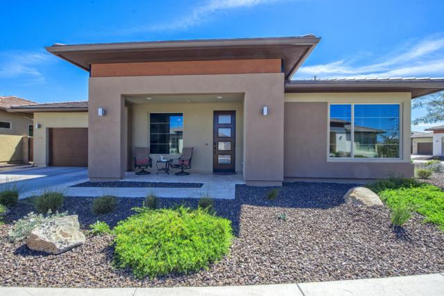13253 W Hummingbird Terrace, Peoria, AZ 85383 (MLS #5904816) :: Yost Realty Group at RE/MAX Casa Grande