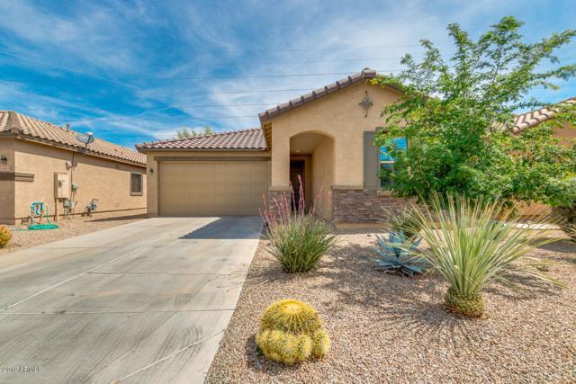 18597 N Celis Street, Maricopa, AZ 85138 (MLS #5904877) :: Yost Realty Group at RE/MAX Casa Grande