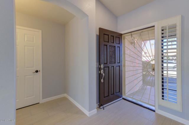 9257 W Behrend Drive, Peoria, AZ 85382 (MLS #5904882) :: The Results Group