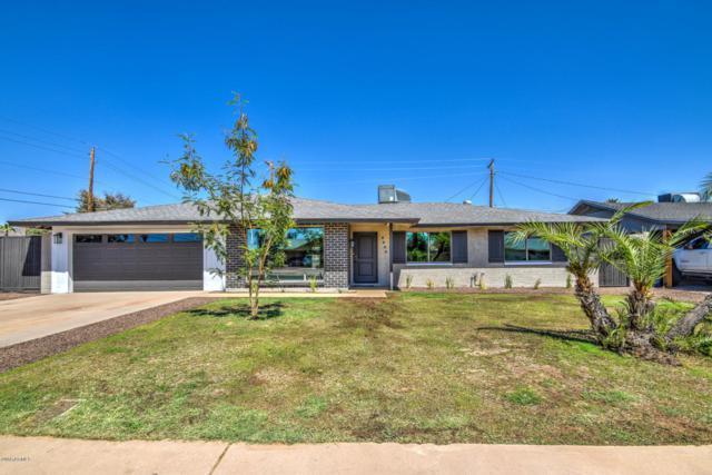 8943 N 17th Drive, Phoenix, AZ 85021 (MLS #5904885) :: Yost Realty Group at RE/MAX Casa Grande