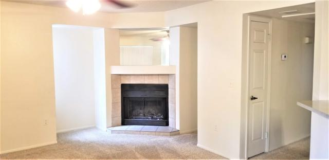 1331 W Baseline Road #214, Mesa, AZ 85202 (MLS #5904934) :: The Everest Team at My Home Group