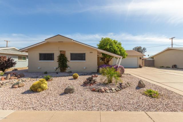 3919 W State Avenue, Phoenix, AZ 85051 (MLS #5904940) :: Yost Realty Group at RE/MAX Casa Grande