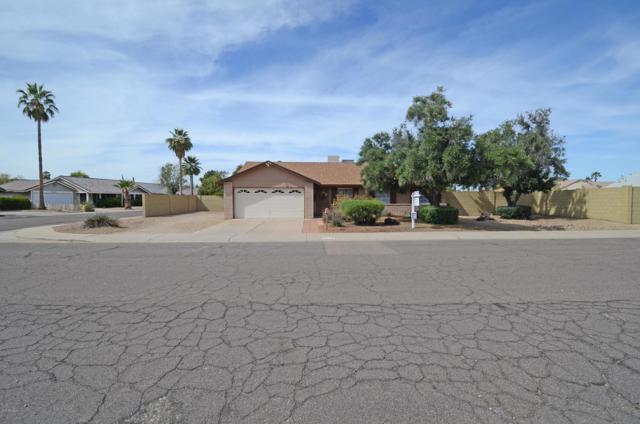 5618 W Wagoner Road, Glendale, AZ 85308 (MLS #5904943) :: Yost Realty Group at RE/MAX Casa Grande