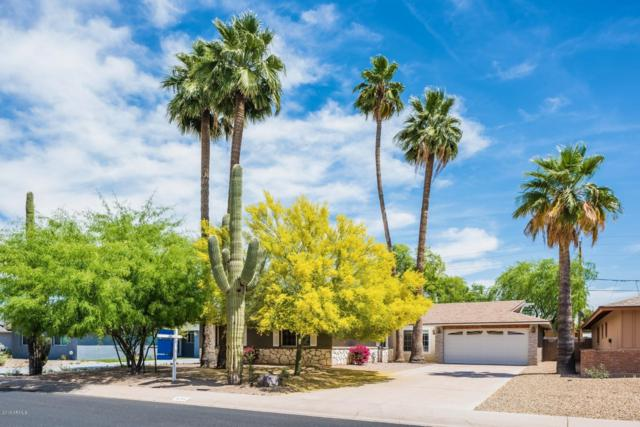 3711 S Kenneth Place, Tempe, AZ 85282 (MLS #5904956) :: Yost Realty Group at RE/MAX Casa Grande