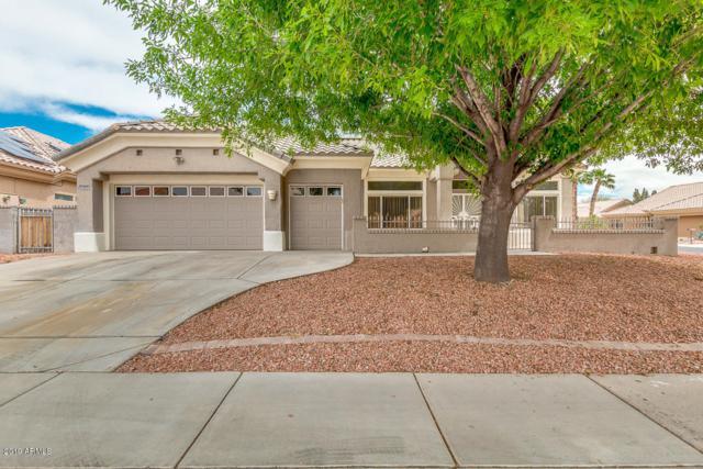 22603 N Dusty Trail Boulevard, Sun City West, AZ 85375 (MLS #5905001) :: Yost Realty Group at RE/MAX Casa Grande