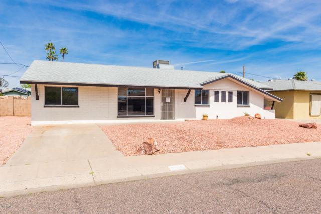 2538 W Larkspur Drive, Phoenix, AZ 85029 (MLS #5905050) :: Yost Realty Group at RE/MAX Casa Grande
