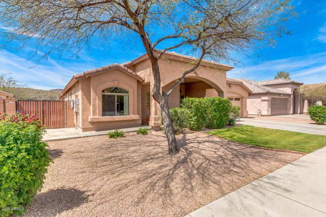 20818 N 39TH Drive, Glendale, AZ 85308 (MLS #5905083) :: RE/MAX Excalibur