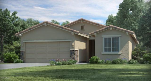 565 S 202ND Lane, Buckeye, AZ 85326 (MLS #5905209) :: The Results Group