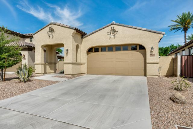13100 N 91ST Lane, Peoria, AZ 85381 (MLS #5905228) :: Santizo Realty Group
