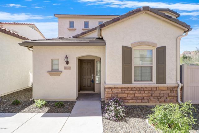 26716 N 53RD Lane, Phoenix, AZ 85083 (MLS #5905265) :: Yost Realty Group at RE/MAX Casa Grande
