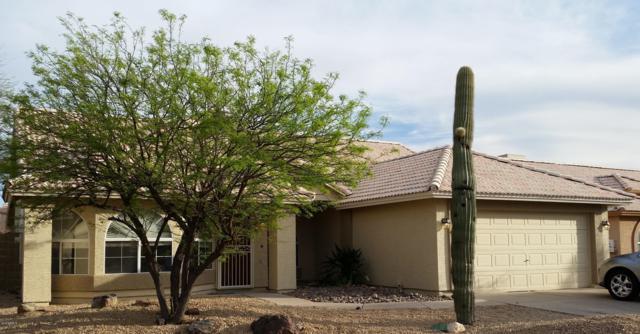 4225 E San Angelo Avenue, Gilbert, AZ 85234 (MLS #5905294) :: Lux Home Group at  Keller Williams Realty Phoenix