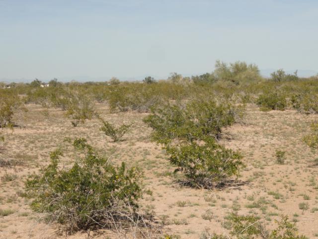 52610 # D W Pampas Grass Road, Maricopa, AZ 85139 (MLS #5905323) :: The Daniel Montez Real Estate Group