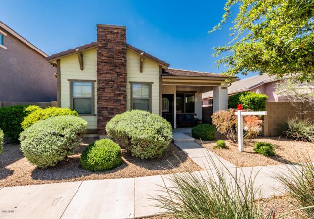 18928 N 43RD Way, Phoenix, AZ 85050 (MLS #5905324) :: Yost Realty Group at RE/MAX Casa Grande