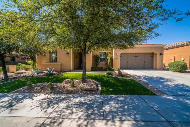 1463 E Sweet Citrus Drive, San Tan Valley, AZ 85140 (MLS #5905334) :: Yost Realty Group at RE/MAX Casa Grande